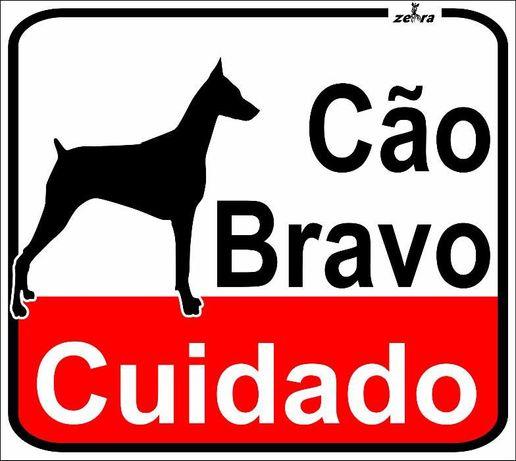 Placa de Sinalização Cuidado com o Cão