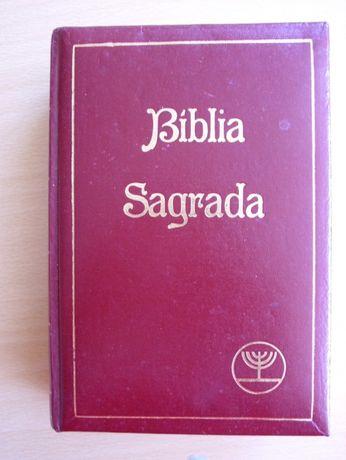 Bíblia Sagrada - Versão de textos originais