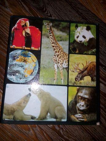 Журнал В мире дикой природы