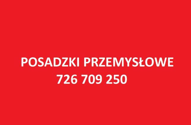 Posadzki Betonowe Przemysłowe - Przemyśl i okolice Szybko Tanio