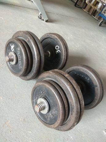 Hantle żeliwne skręcane 2x30 kg sztangielki