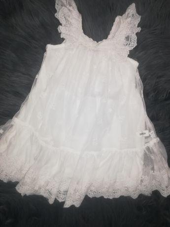 Newbie limited sukienka rozmiar 80