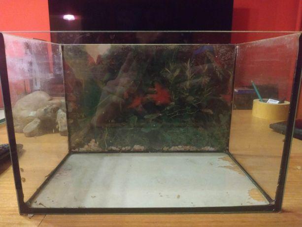 Małe akwarium 32x18x20 używane