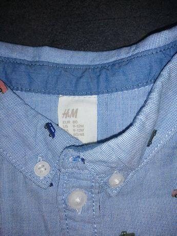 Sprzedam koszule niemowlęca rozmiar 80 H&M stan idealny