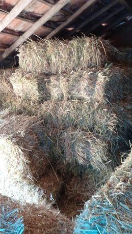 Vende-se fardos de palha de aveia