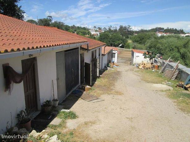 Centro Hípico na Figueira