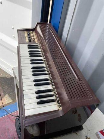 Magnus - Orgão de canas - Bélgica - 1970, Excelente estado -
