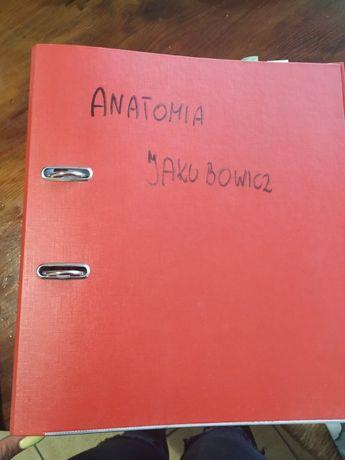 I tom Anatomii Jakubowicza