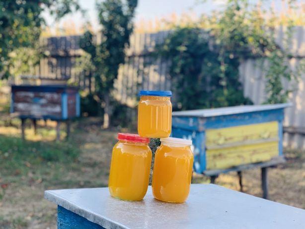 Мед 130 грн/л -  З домашньої пасіки