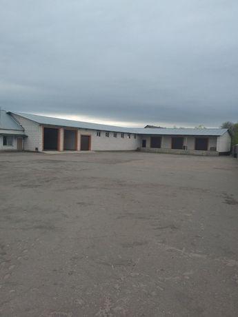 Производственная база.