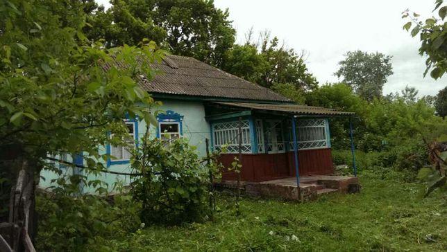 Продается дом с. Калиновка Черниговская обл. Носовский р.