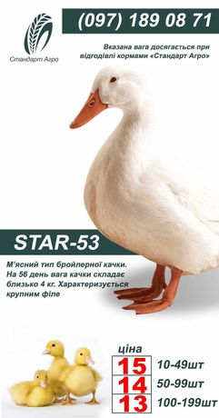 Утка Стар-53 ОПТ и Розница
