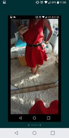 Sukienka marki Sugarfree