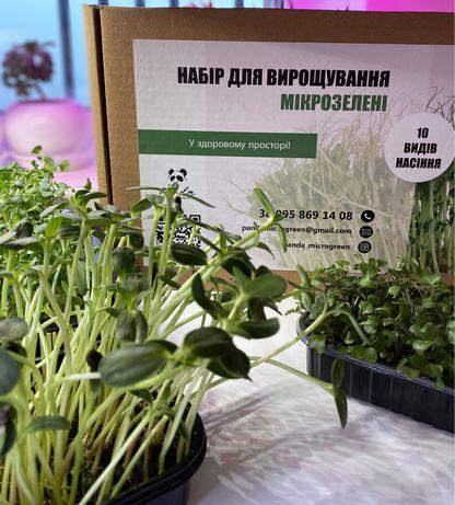 Набір для вирощування мікрозелені