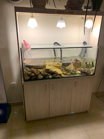 Akwarium z szafką i filtrem kubełkowym Okazja !