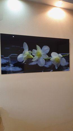 Стеклянная картина на стекле 114×54 стекло скляна картина на склі