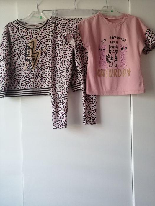 Komplet coccodrillo bluza koszulka legginsy rozmiar 110 Przemyśl - image 1