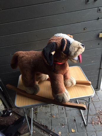 Pies na biegunach , bujany zabawka dla dziecka . OKAZJA .