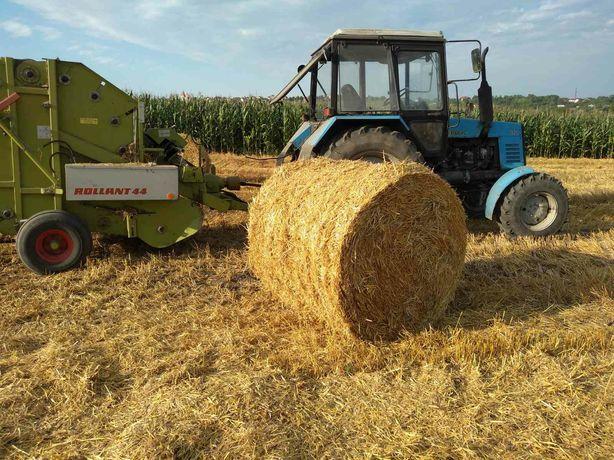 Солома пшенична в рулонах 2020 року 1.2×1.2