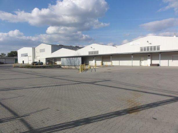 Hale magazynowo – produkcyjne z suwnicami pow. 5 800 m2