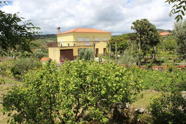 Quinta de 6500m2 com moradia - Chãs de Tavares, Mangualde