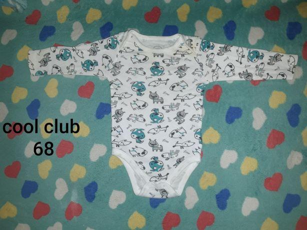 Body cool club roz 68