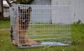 Усиленная клетка 108х72х83 для собаки овчарки лабрадора стафа доберман