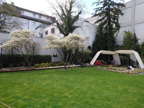 Projektowanie i wykonanie ogrodów, pielęgnacja sezonowa roślin