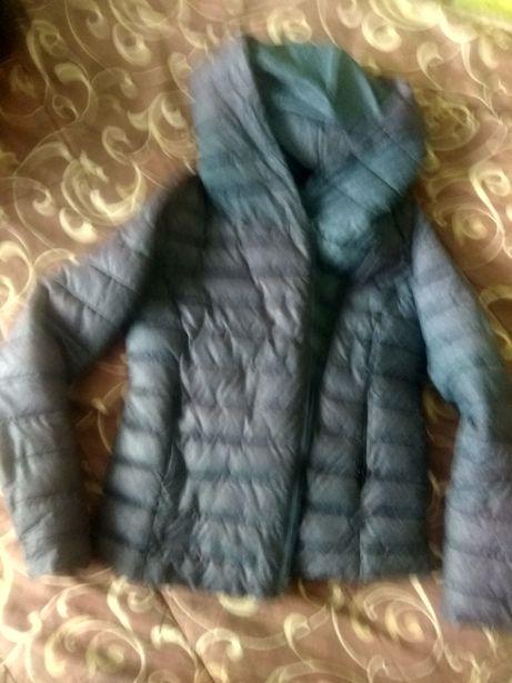 Куртки размер 38