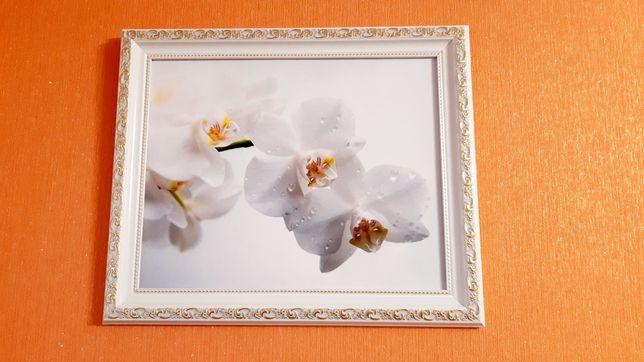НОВАЯ картина БЕЛЫЕ ОРХИДЕИ. Цветы. 37*30 см. В бело-золотой раме.