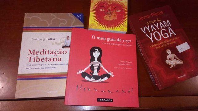 Lote  livros de Yoga e meditação, linguagem do espírito, zen, buda