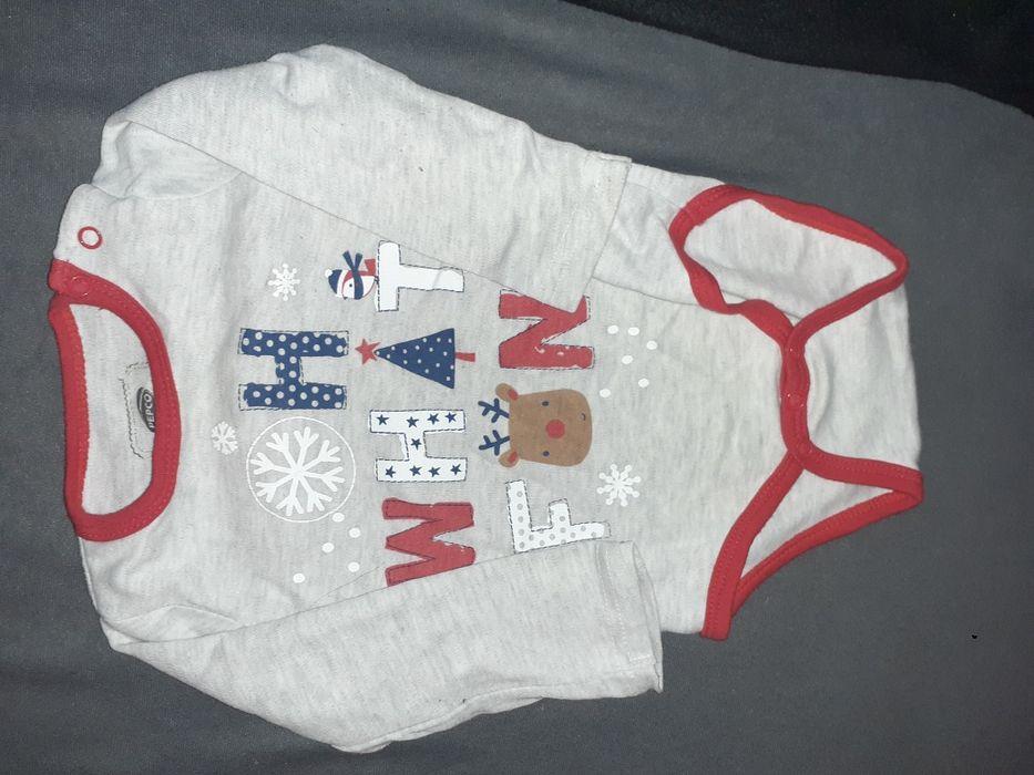 Body świąteczne Oborniki - image 1