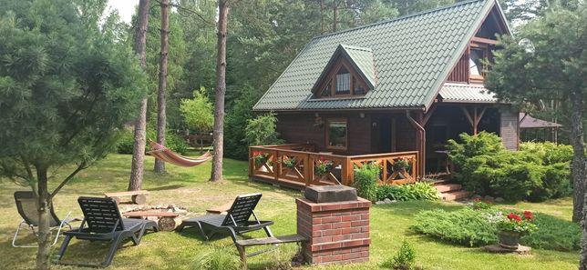 Domek Bory Tucholskie-   W SAM LAS - realizujemy bony turystyczne