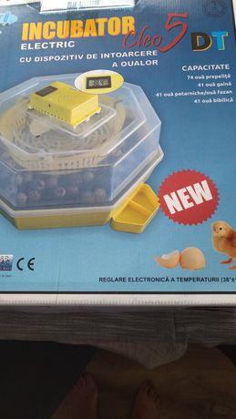 Inkubator- klujnik