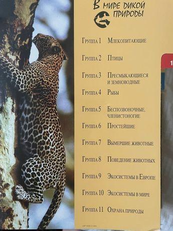 Журналы в мире дикой природы