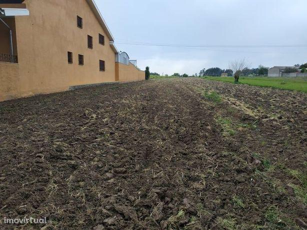 Terreno  Venda em Aradas,Aveiro