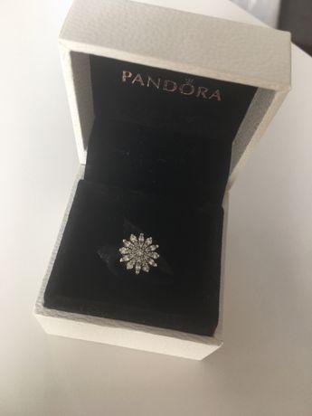 charms Pandora rozetka