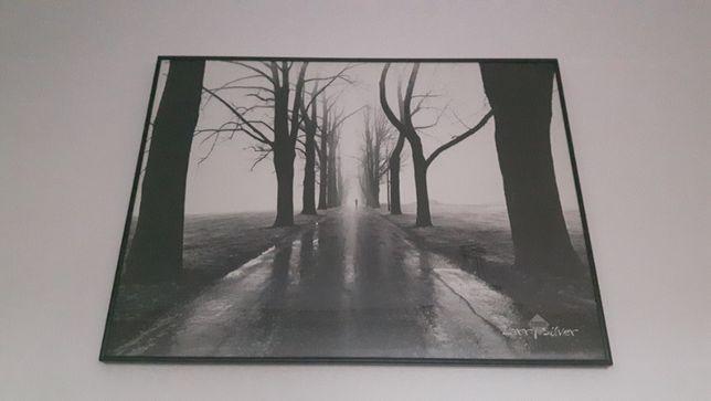 Obraz fotografia czarno-biała