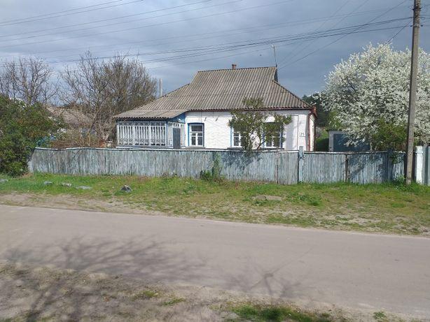 продаеться дом, будинок, в гарному стані. ТОРГ!!!
