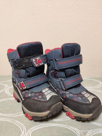 Зимние ботинки Tom. m