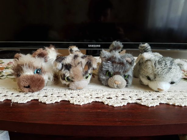 Коти the cat collection