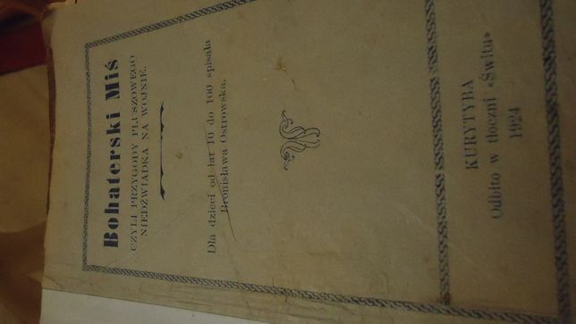 bahaterski miś ksiązka