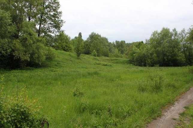 Продается рельефный участок в черте населенного пункта Зеленый Бор.