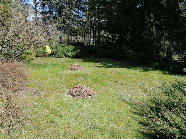 Koszenie trawników, wykaszanie traw i inne