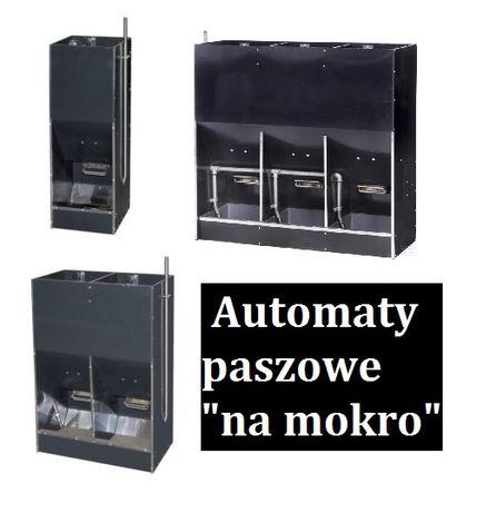 Karmniki ze zraszaczem dla tuczników_Paszownik na mokro 3-stanowiskowy