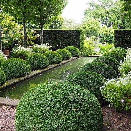 Озеленение,ландшафтный дизайн,благоустройство,стрижка газона,водопады