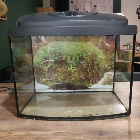 Akwarium 30 l z pokrywą