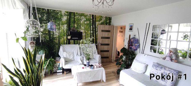 mieszkanie 60m 3 pokoje 3 piętro Polkowice