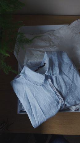 Koszula błękitna Carry