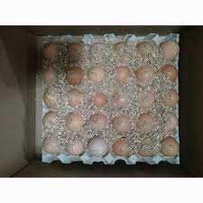 Инкубационное Яйцо БРОЙЛЕРА КОББ 500 Украина,Чехия,Польша,Венгрия